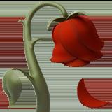 wilted_flower